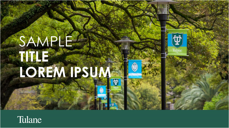 "The words ""Sample Title Lpre, Ipsum"" over a photo of oak trees and banners hanging on campus. This is a title slide as part of a PowerPoint template for Tulane."