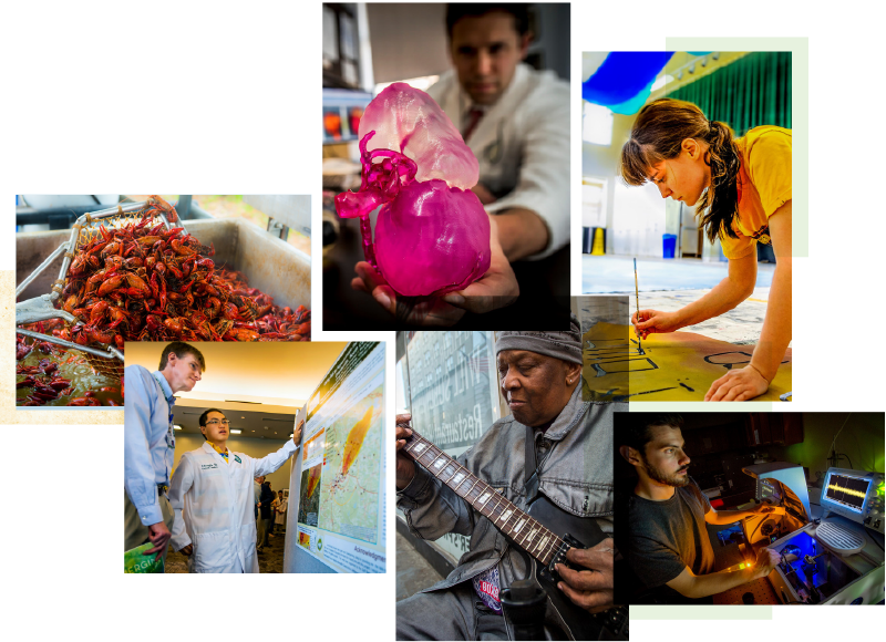 A photo collage of high-impact vibrant photography, of crawfish, musicians, artists, medical research and Tulane signs.