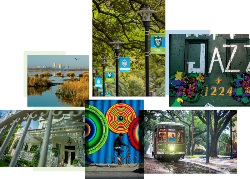 A photo collage of beautiful places around New Orleans, such as streets, lake views, streetcars passing on St. Charles Avenue, and picturesque city details.